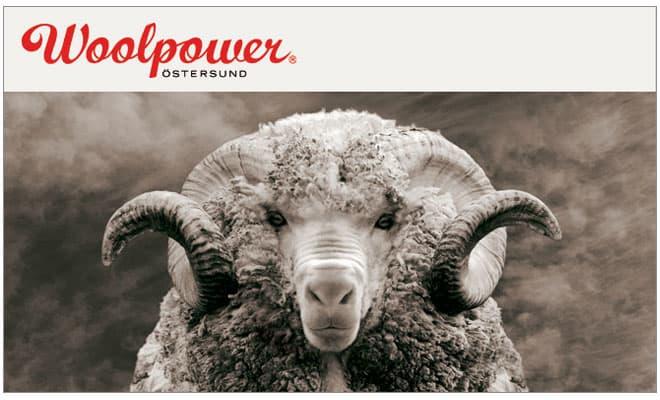 Afbeeldingsresultaat voor woolpower logo